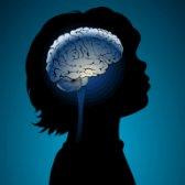 Dès la naissance, le cerveau compte environ 100 milliards de neurones.