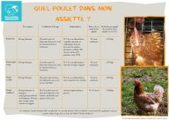 Fiche pratique poulet