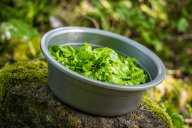 salade verte credits Marjan Lazarevski