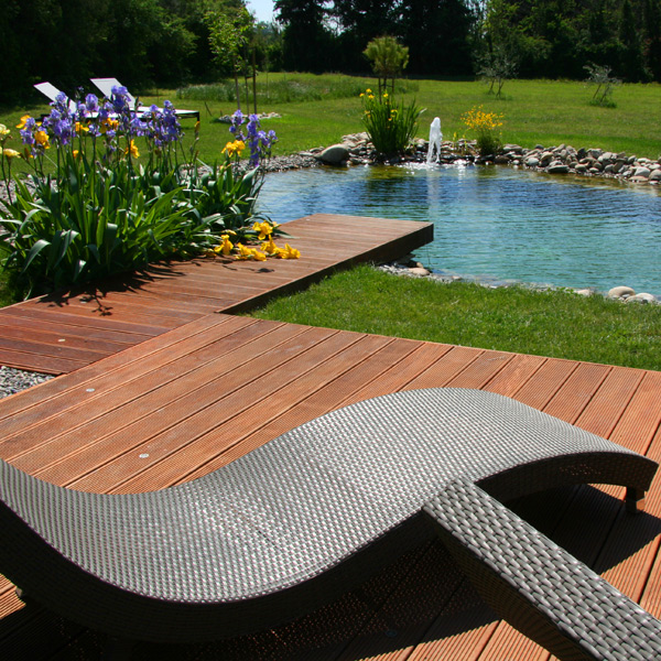 Piscine cologique une piscine 100 naturelle dans votre for Bar dans une piscine