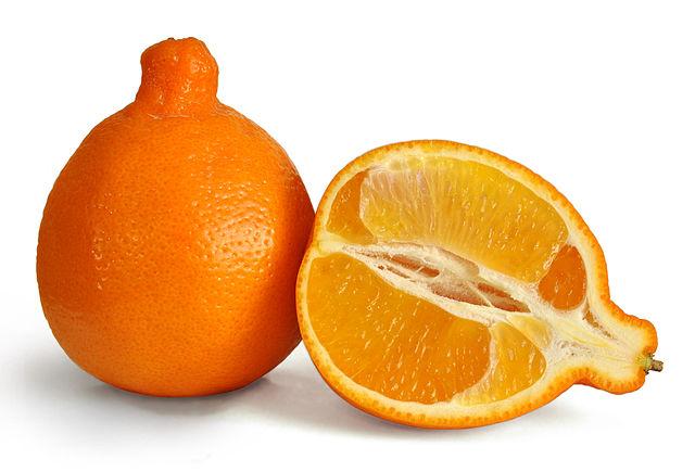 "Tangelo © ""Minneola fruit 3"" d'Amada44. Creative Commons Attribution 3.0 via Wikimedia Commons"
