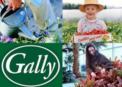 La ferme de Gally