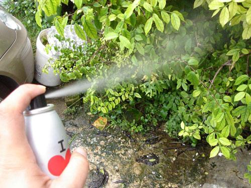 Le déodorant: ça pue pour la santé!