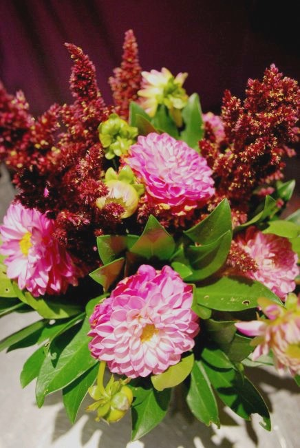 Le dahlia, vedette des bouquets d'automne