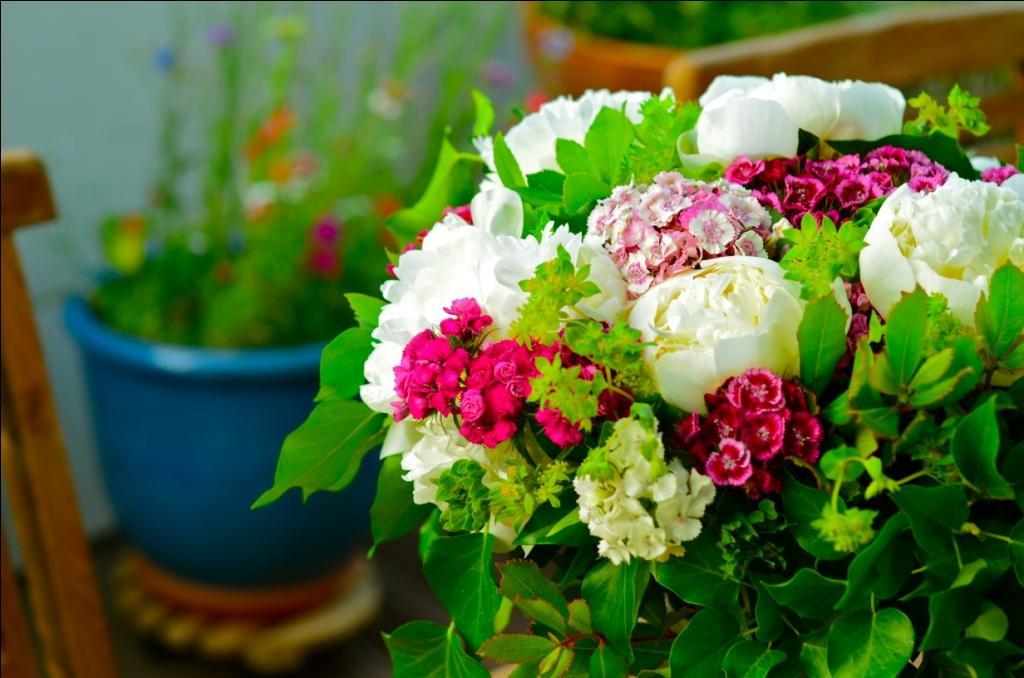 Joli bouquet d'été.