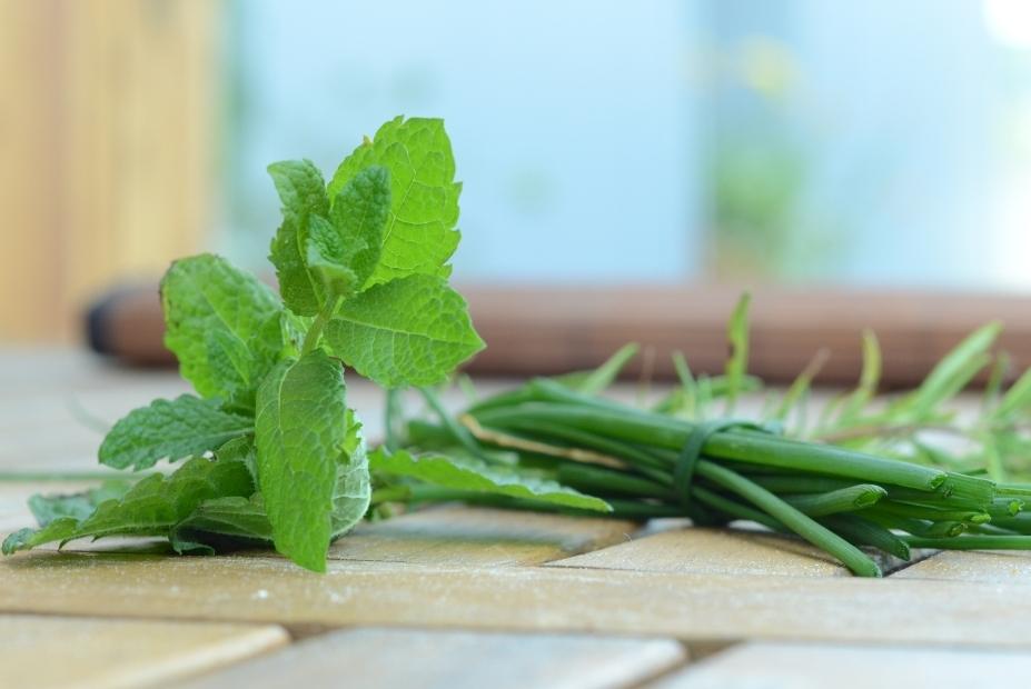 Connaissez-vous les fines herbes?