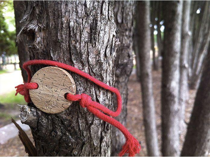 Treez : le bracelet qui ravive les forêts