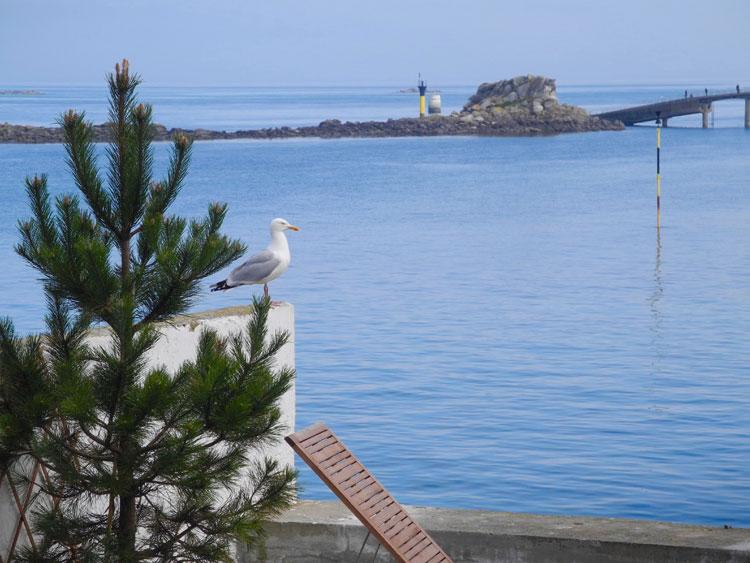 Un balcon sur la mer à Roscoff