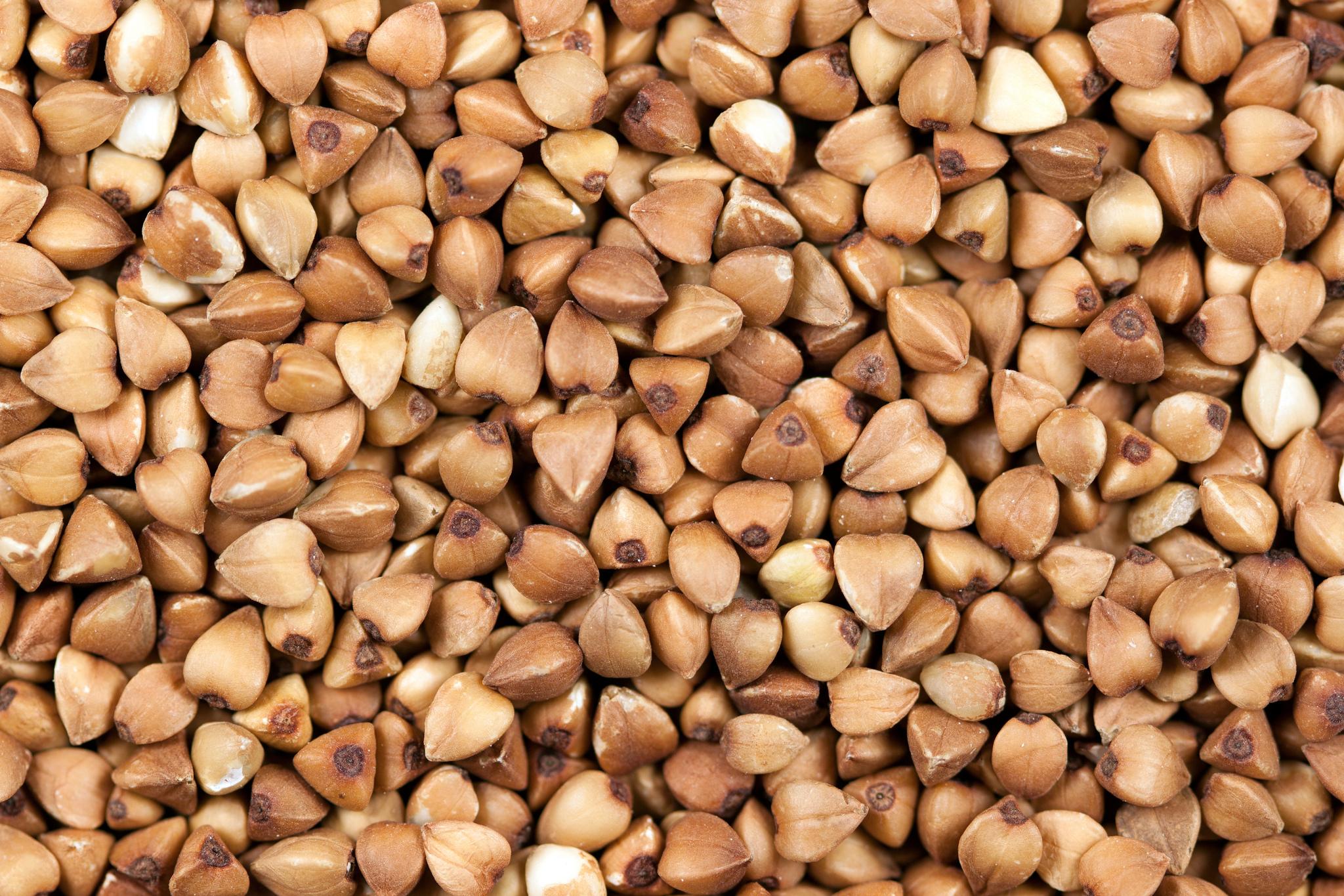graines de troc une plateforme d 39 change de semences mon quotidien autrement. Black Bedroom Furniture Sets. Home Design Ideas