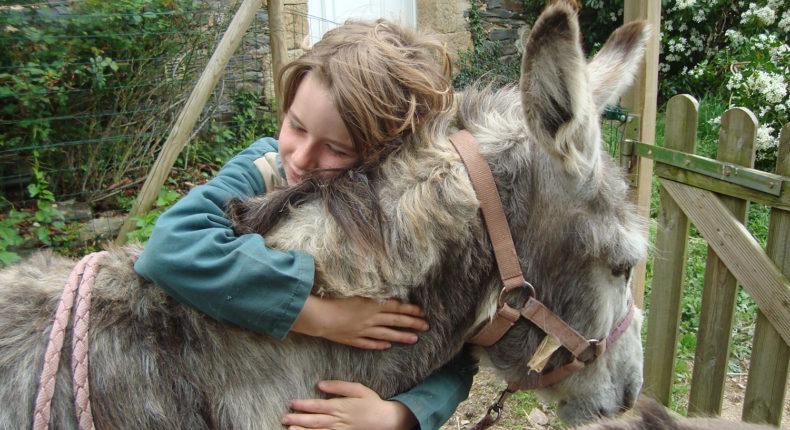 A la Ferme de la forêt, les enfants nourrissent, soignent et câlinent les animaux. © La Ferme de la forêt