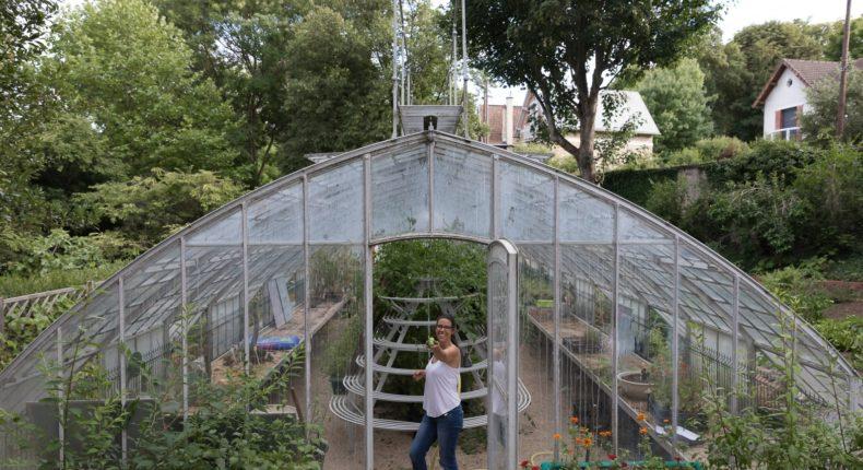 jardin-amélie-comestible