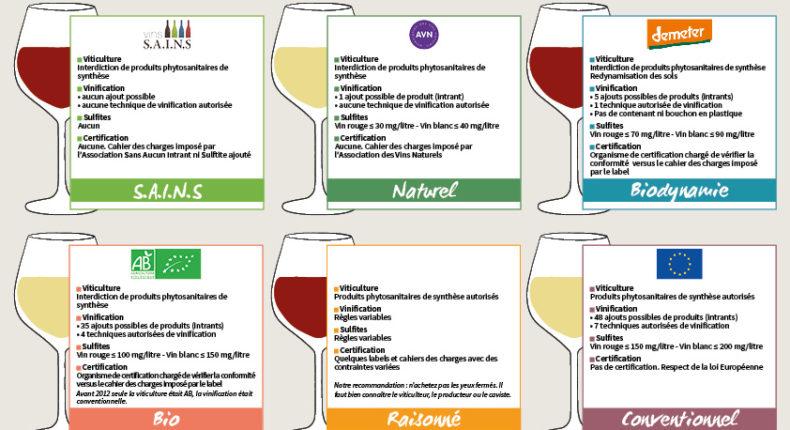 Notre guide pratique pour tout connaitre sur les vins