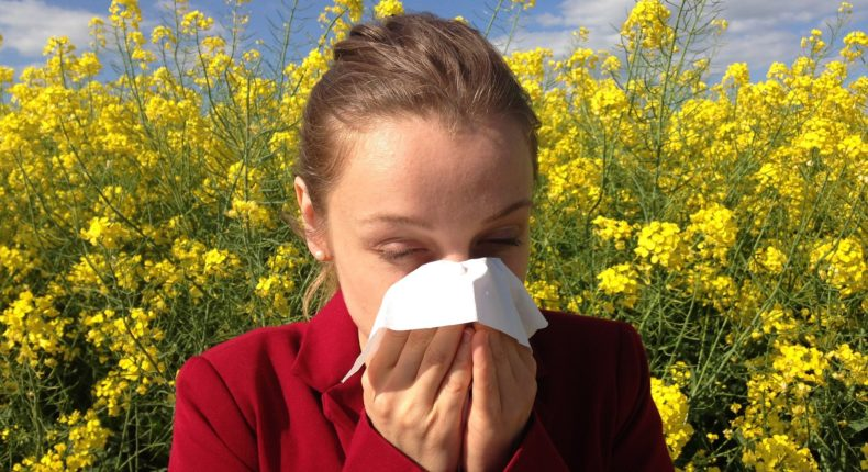 Une huile végétale et bio pour atténuer les allergies de printemps