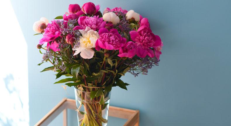 Bouquet de Pivoines - DR Mon Quotidien Autrement - Lucas Poisson