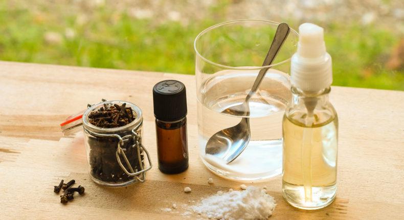 Remèdes pour une haleine fraîche | DR Mon Quotidien Autrement | Lucas Poisson